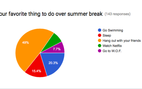 Favorite Summer Break Ideas