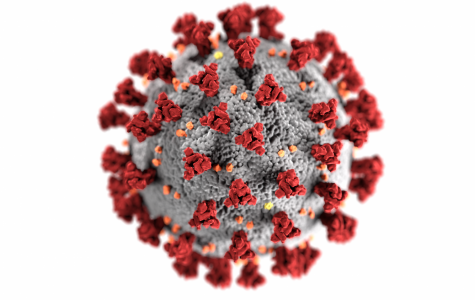 The COVID-19 virus has spread world wide.