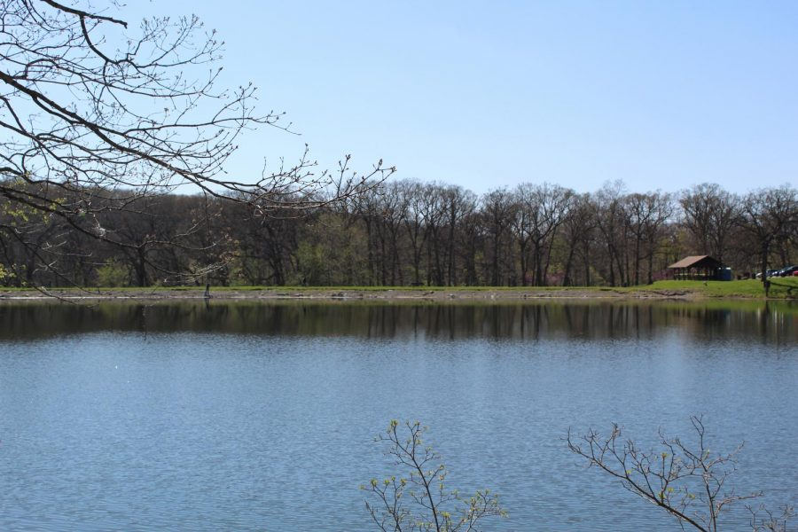 A great view of the Wallace State Park lake and the trees with wildlife in them. Wallace State Park is located a 45-minute drive north, near Cameron, Mo.       https://mostateparks.com/park/wallace-state-park